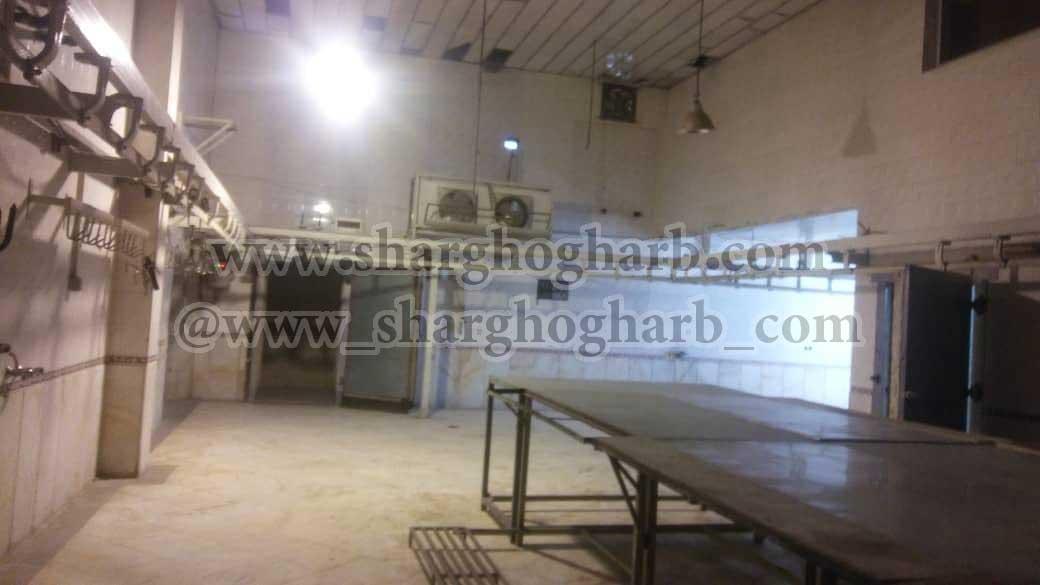 فروش کارخانه تولید و بسته بندی مواد پروتئینی گوشت قرمز و سفید و تولید همبرگر و کباب لقمه در استان تهران