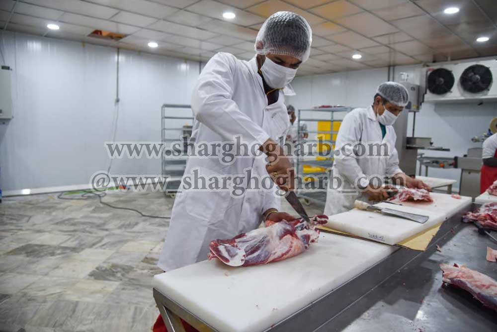 فروش مجتمع بسته بندی و انجماد انواع گوشت قرمز، ماکیان، آبزیان و تولید انواع برگر در استان قم